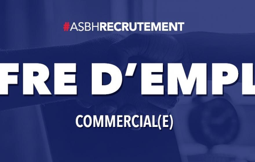 Offre d'emploi / Commercial (e)